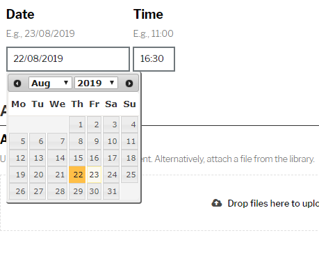 Date and time fields with dropdown calendar